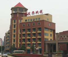武汉卓尔总部基地视频监控系统